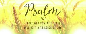 Live Events Stock Media - Harvest Sowing Psalm
