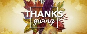 Live Events Stock Media - Thanksgiving Centerpiece 01