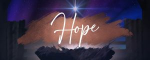 Live Events Stock Media - Christmas Hope Advent Hope