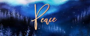 Live Events Stock Media - Christmas Woods Peace