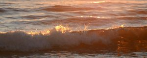 Live Events Stock Media - Sunrise Waves 04