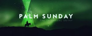 Live Events Stock Media - Holy Week Glow Palm Sunday