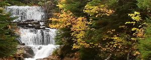 Live Events Stock Media - Autumn at Sable Falls Loop