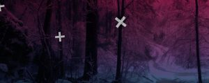 Live Events Stock Media - Blue Pink Winter Forest Path Crosses