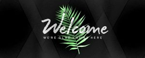 Live Events Stock Media - Palm Leaf Welcome Still