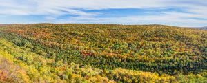 Live Events Stock Media - Brockway Mountain Autumn Vista