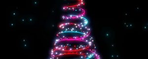 Live Events Stock Media - Christmas Trees 01