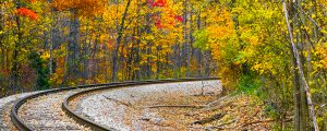 Live Events Stock Media - Autumn Railway