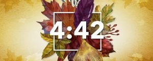 Live Events Stock Media - Thanksgiving Centerpiece Countdown