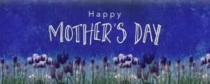 Live Events Stock Media - Mothers Day Tulips Holiday