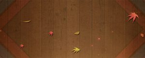 Live Events Stock Media - Fall Leaves 2