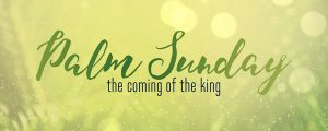 Live Events Stock Media - Easter Week Palm Sunday Still