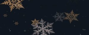 Live Events Stock Media - Christmas Snowflakes 12