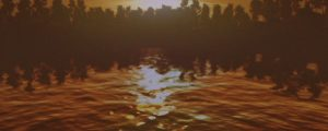 Live Events Stock Media - Sunset Reflections Water